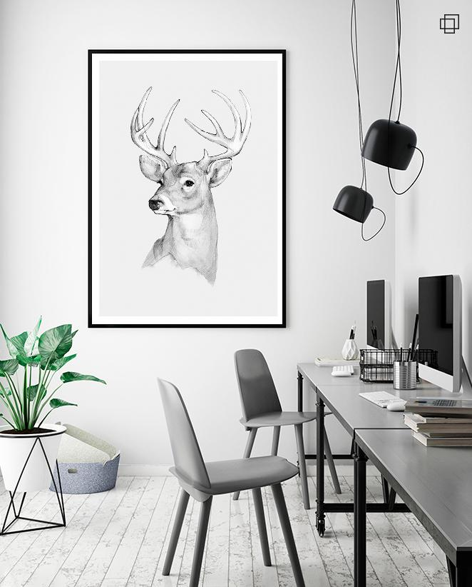 WHITE DEER Plakat
