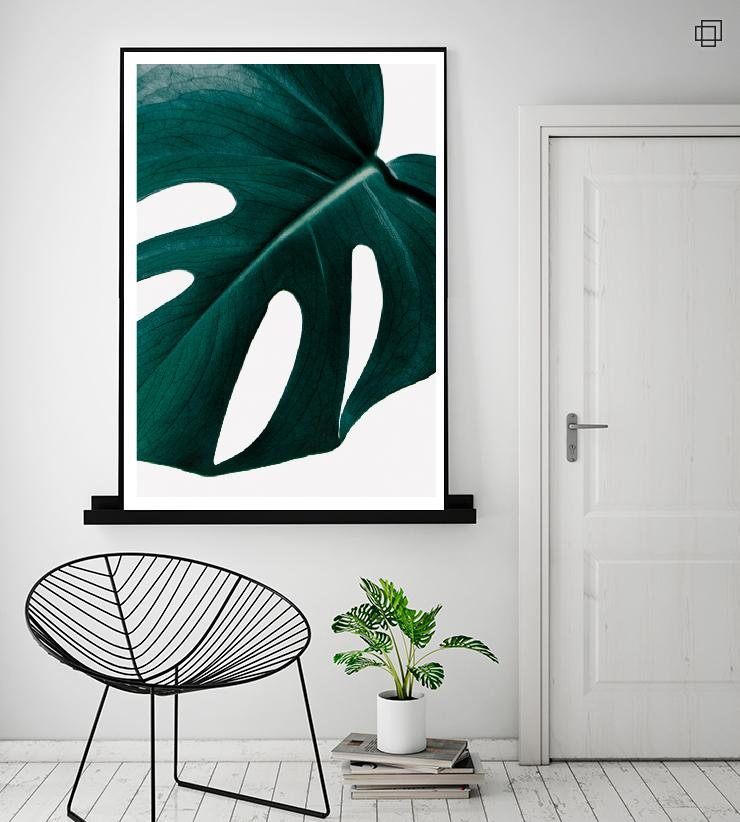MONSTERA PLANT NO4 Plakat