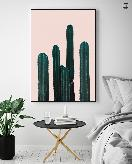 CACTUS ON PINK TWO