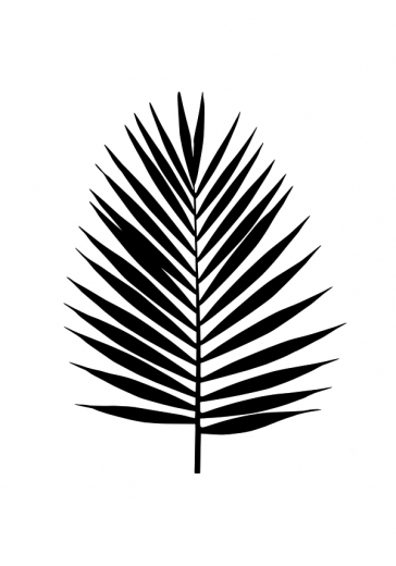 BLACK PALM LEAF