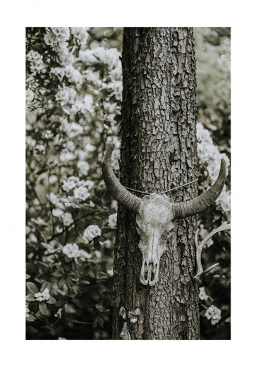 FOREST BEAUTY SKULL
