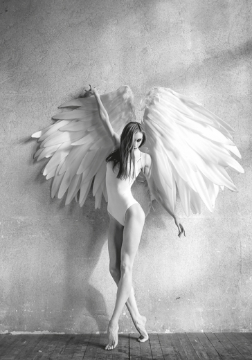B&W WINGS