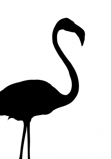 BLACK FLAMINGO ONE